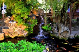 waterfall in a pond